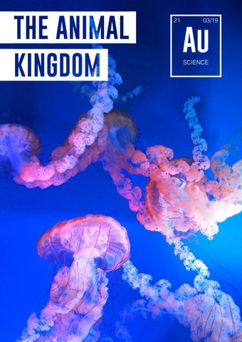 Issue 21 - Animal Kingdom