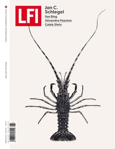 LFI Magazine 6/2019 E