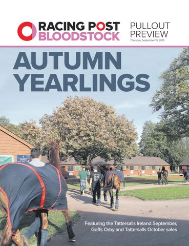 Autumn Yearling Supplement 2019 By Racing Post Bloodstock