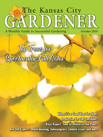 Kcg Oct19 By The Kansas City Gardener Issuu