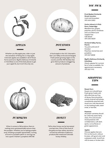 Page 63 of Autumn Produce