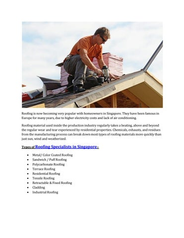 Roof Specialist Roofing Industry In Singapore Alco Sunshade By Kishore Krishna Issuu