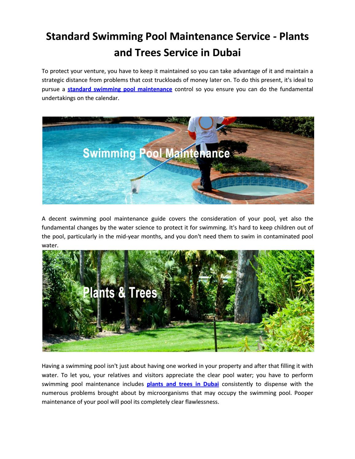 Standard Swimming Pool Maintenance Service - Plants and ...