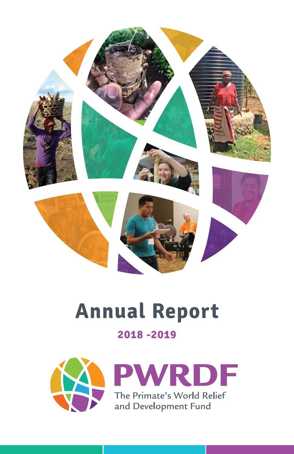2019 Annual Report By Pwrdf1 Issuu