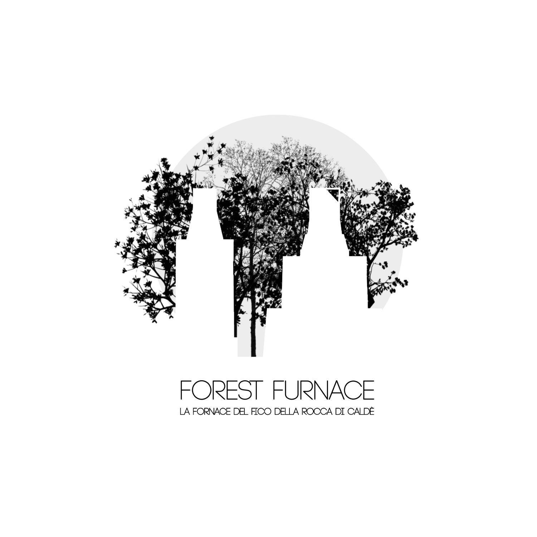 Vespaio Areato Altezza Minima forest furnace   architecture thesis   eleonora negri