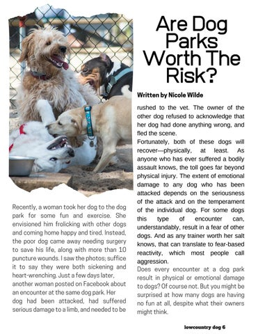 Page 6 of Are Dog Parks Worth The Risk?