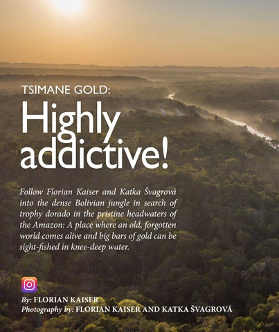 Page 144 of Tsimane Gold: Highly Addictive