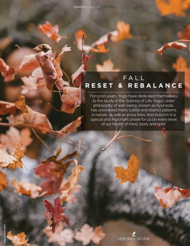 Page 13 of Fall Reset & Rebalance
