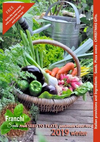 Franchi Seeds Climbing French Bean Fagiolo Rampicante Stringa seed