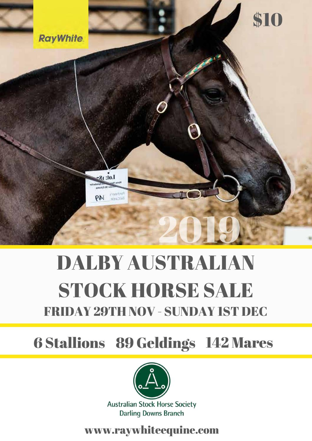 2019 Dalby Australian Stock Horse Sale Catalogue By Ray White Equine Issuu