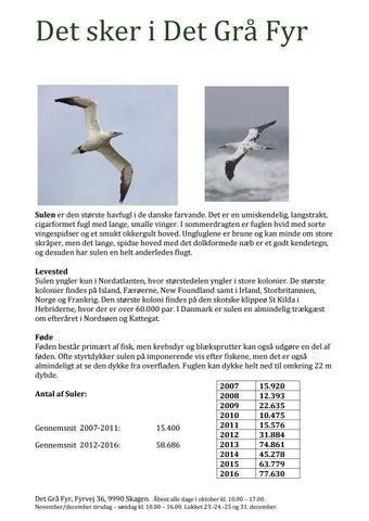 Page 5 of Det Grå Fyr Guidet natur- og fugletur i Byfogedskoven