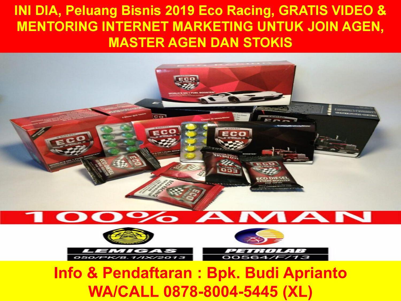 Peluang Usaha 2019 Sinergy Eco Racing Adalah Wa 0878 8004 5445