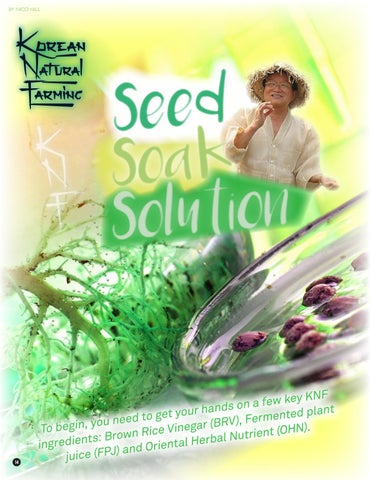 Page 14 of KNF - Seed Soak Solution