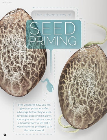 Page 18 of The Adventures of Seed Priming