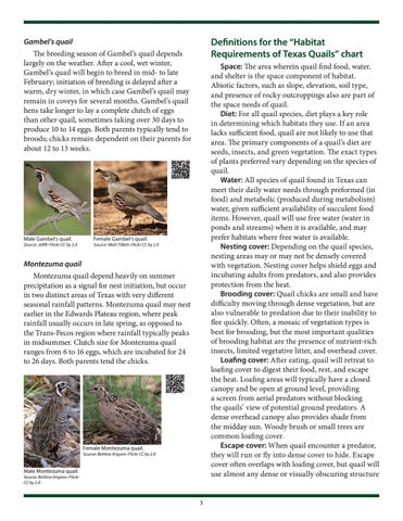 Page 3 of Life Cycle and Habitat Requirements of Montezuma Quail