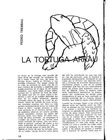 Page 3 of La Tortuga Arrau - Pedro Trebbau (1969)