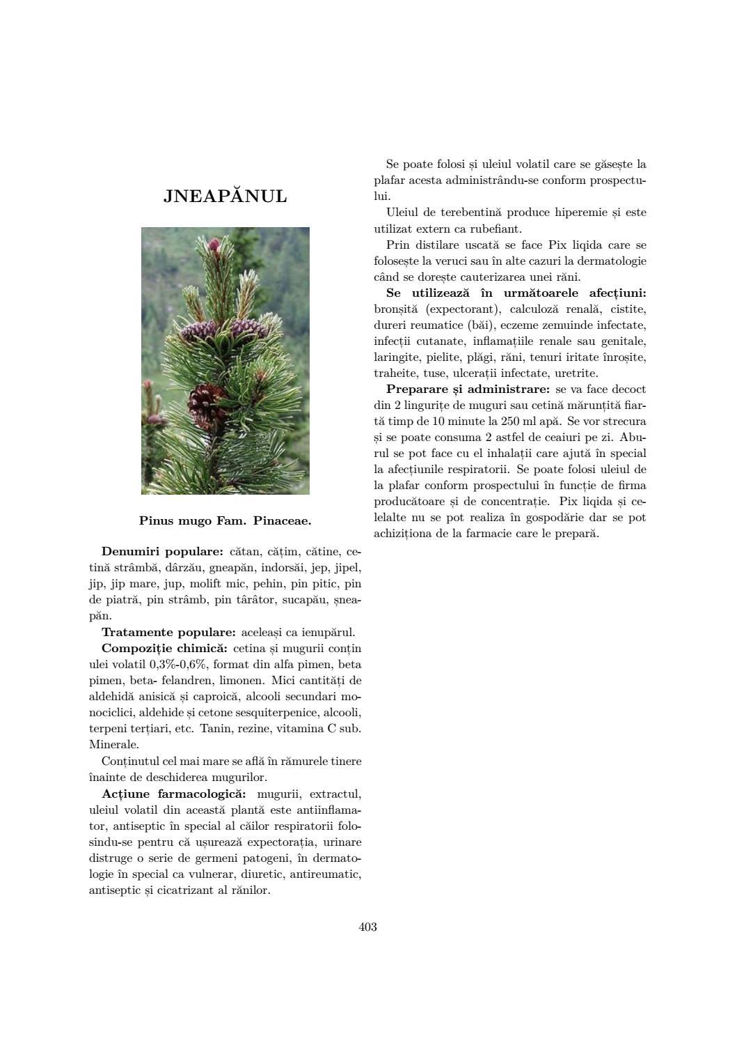 varicoză geranium
