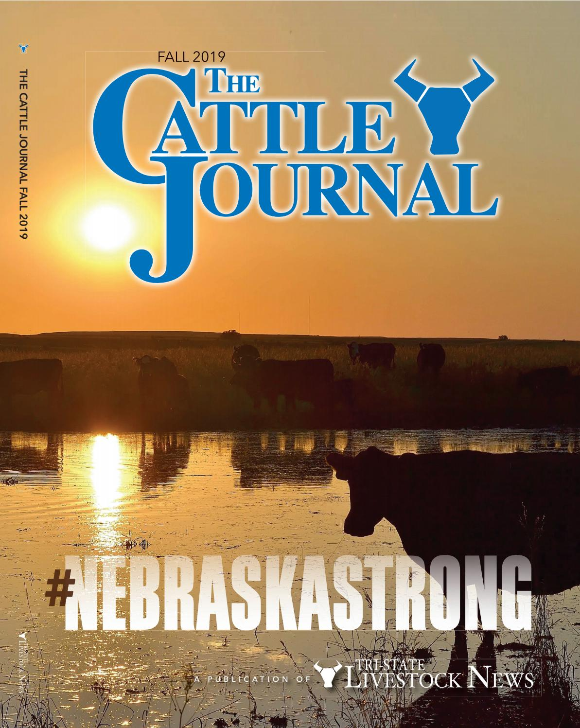 Design On Stock Blizz Bank.Fall Cattle Journal 2019 Nebraskastrong By Tri State Livestock