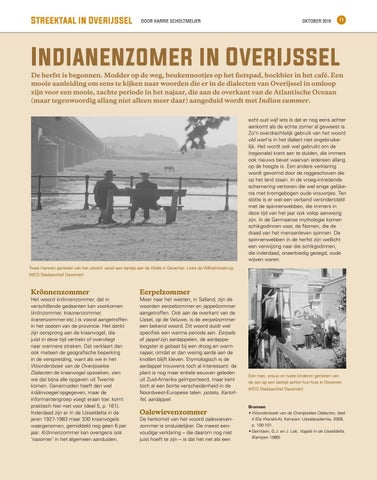 Page 11 of Indianenzomer in Overijssel