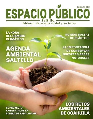 Espacio Público N 14 By Implan Saltillo Issuu