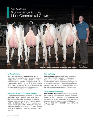 Page 18 of Feature Sires