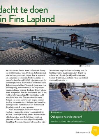 Page 35 of Wat ik nooit dacht te doen (en toch deed) in Fins Lapland