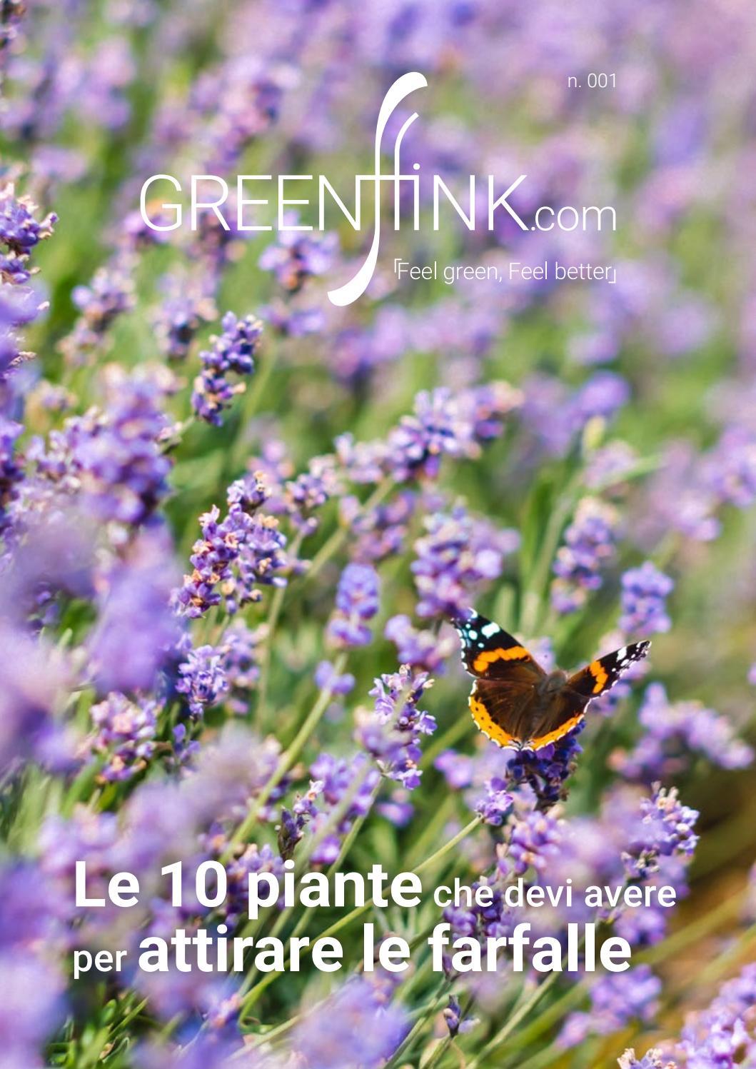 Piante Erbacee Perenni Da Ombra le dieci piante che devi avere per attirare le farfalle by