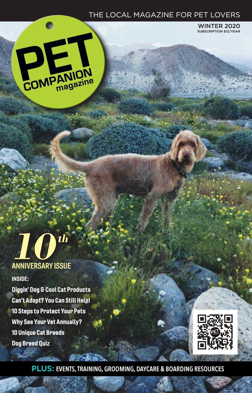 Pet Companion Magazine Special 10th Anniversary Issue By Pet Companion Magazine Issuu