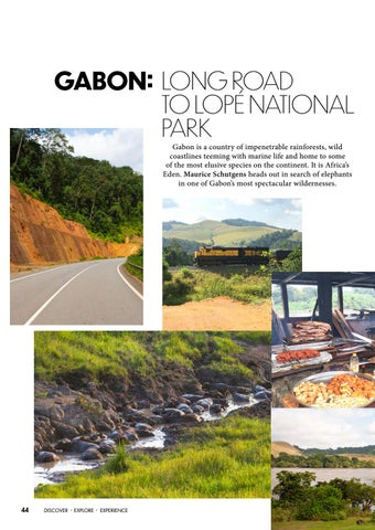Page 46 of Gabon: Long Road to Lope National Park