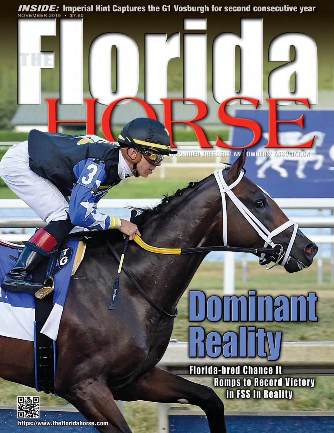Florida Horse November 25 by Florida Equine Publications   issuu