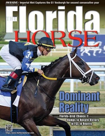 Florida Horse November 2019 By Florida Equine Publications
