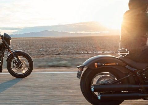 88-16 Harley Davidson Dyna 103 FXD FXDX FXDG Black Rigid Strut Lowering Kit