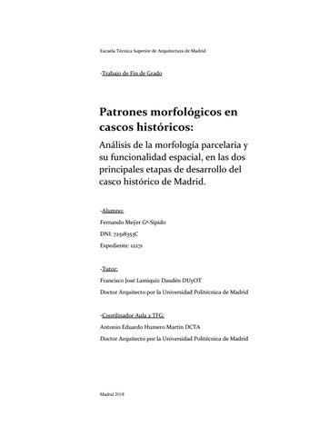 Análisis De La Morfología Parcelaria De La Traza De Madrid