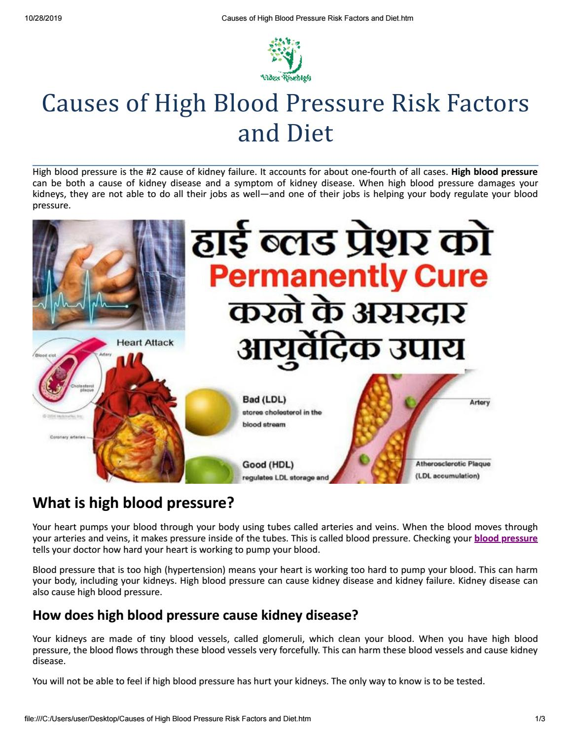 Causes Of High Blood Pressure Risk Factors And Diet By Vidza Risehigh Issuu