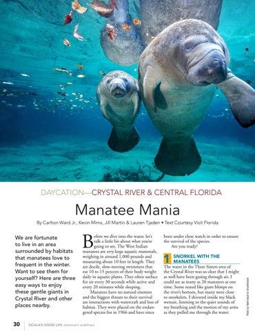 Page 32 of Manatee Mania
