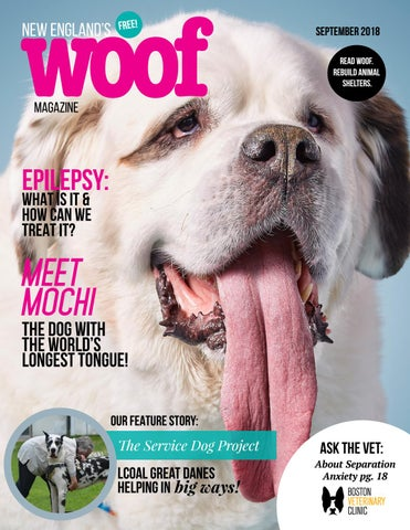 Woof Magazine By Woof Magazine Issuu Common health problems in alaskan malamutes. issuu