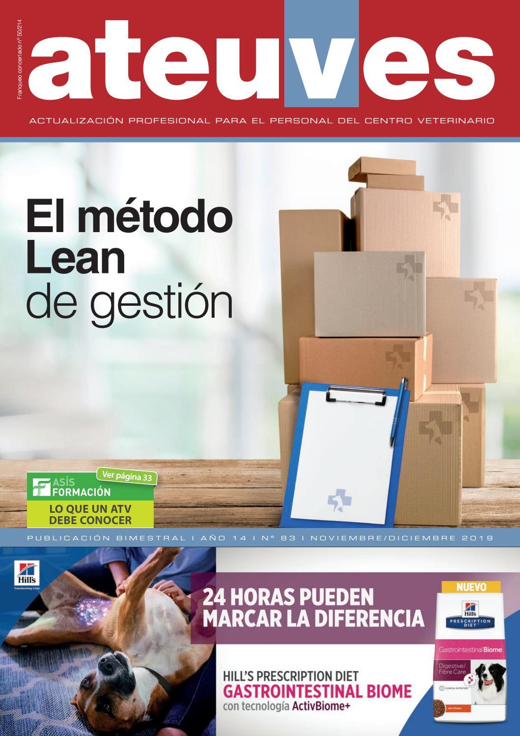 informe de actualización de gestión de diabetes mellitus