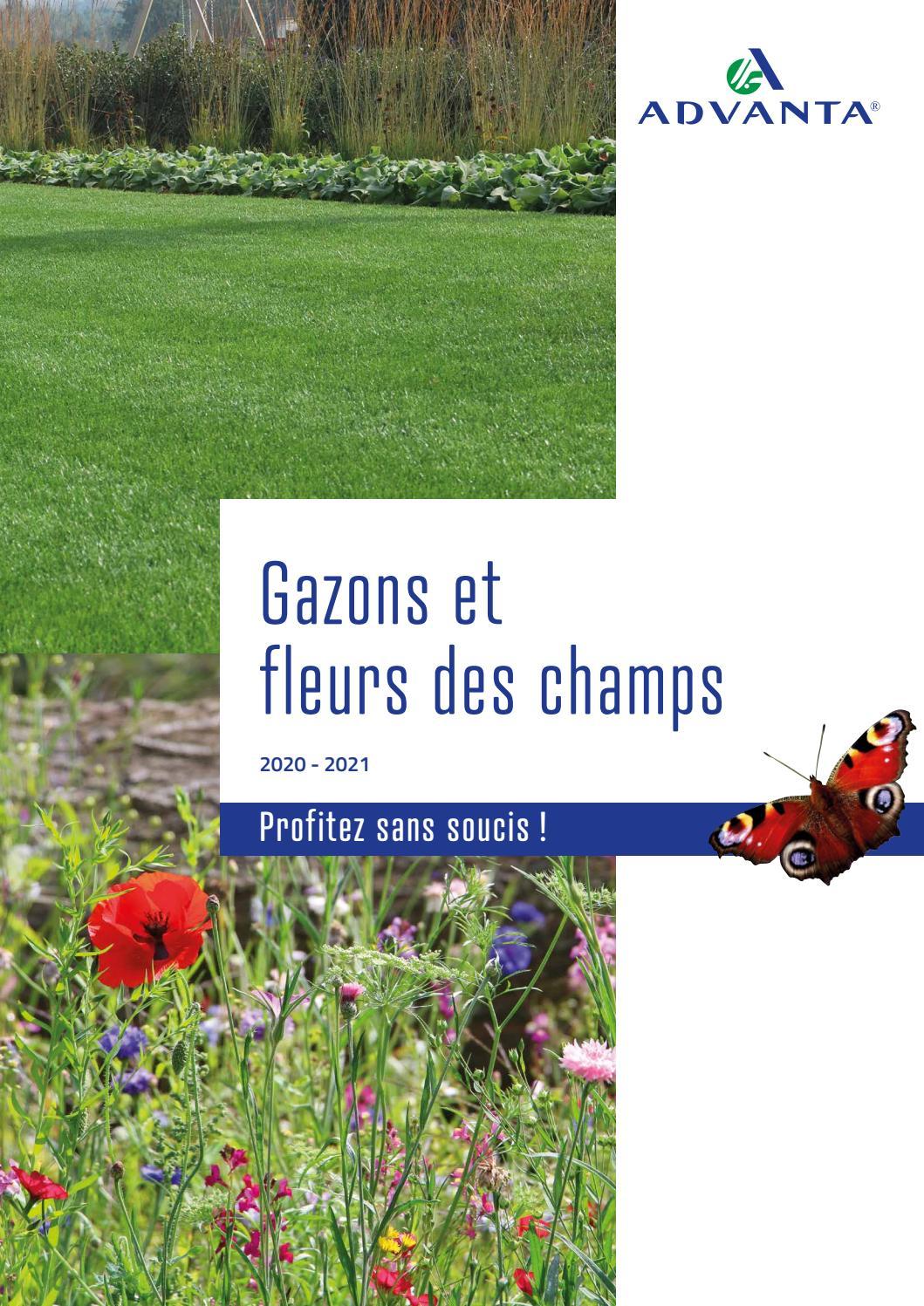 Graines De Fleurs Qui Poussent Très Vite catalogue des gazons advanta seedslg seeds belgium - issuu