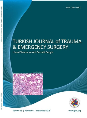 Trauma 2019 6 By Karepublishing Issuu
