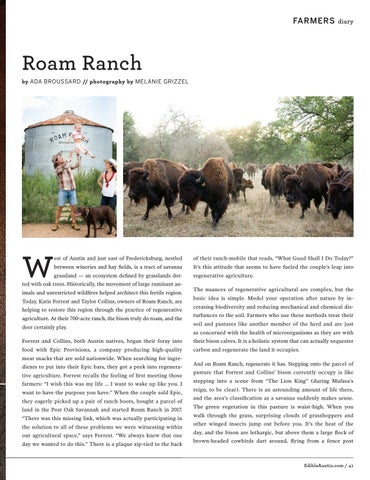 Page 41 of Roam Ranch