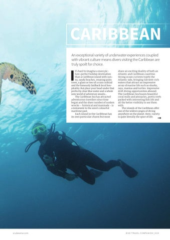 Page 19 of Caribbean