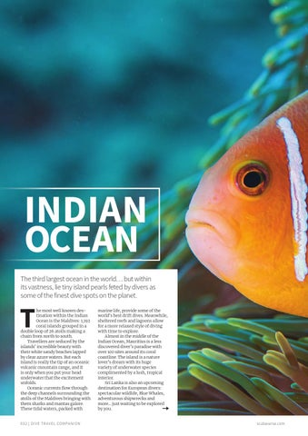 Page 32 of Indian Ocean