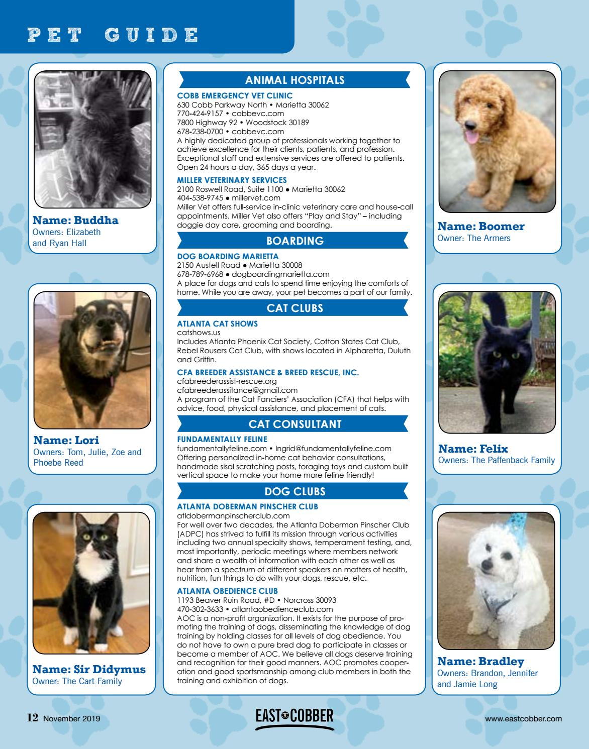 2019 East Cobber Pet Guide By East Cobber Magazine Issuu
