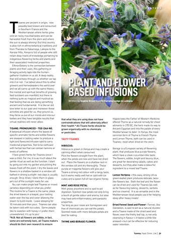 Page 29 of Plant and Flower Based Infusions