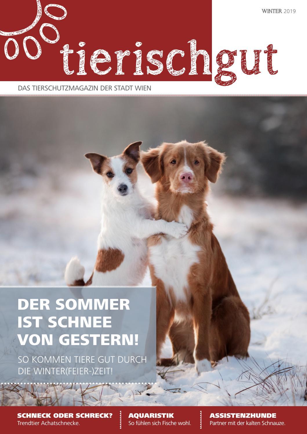 Tierisch Gut 3 2019 Winter By Tierisch Gut Issuu