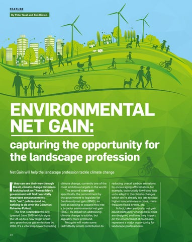 Page 34 of Environmental Net Gain: Capturing the opportunity for the Landscape Profession
