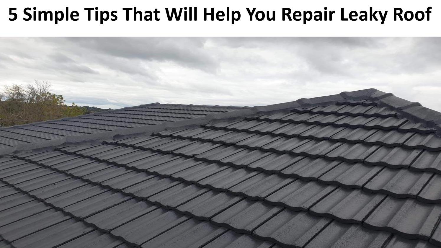 Repair Leaky Roof