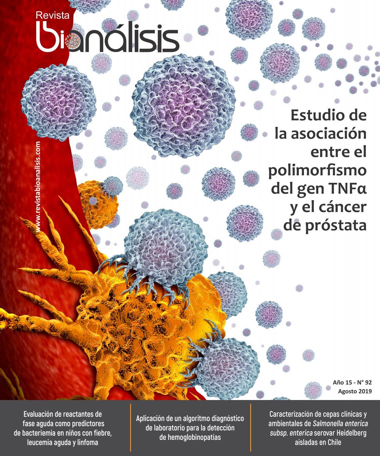 bacterias heces prostatitis