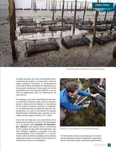 Page 21 of La importancia de la conservación marina en San Quintín