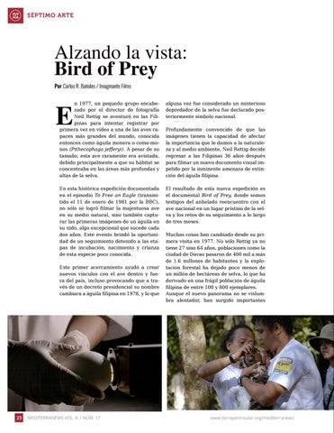 Page 24 of Alzando la vista: Bird of Prey